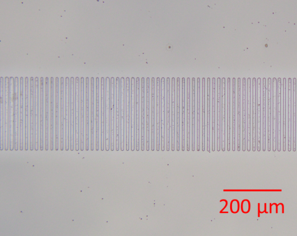 Periodically poled domains revealed by HF etching